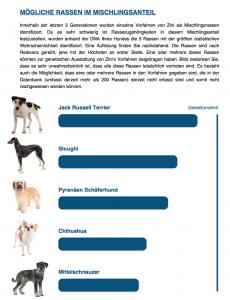 Hund-DNA-Test18