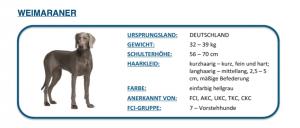 Hund-DNA-Test16