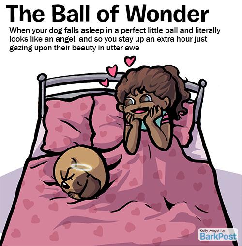 ball_o_wonder-copy